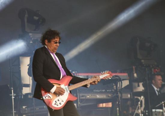 Laurent Voulzy (Photo Béa F10)